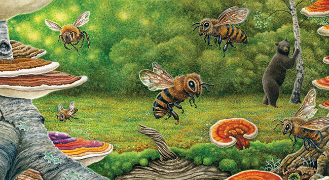 give-bees-a-chance