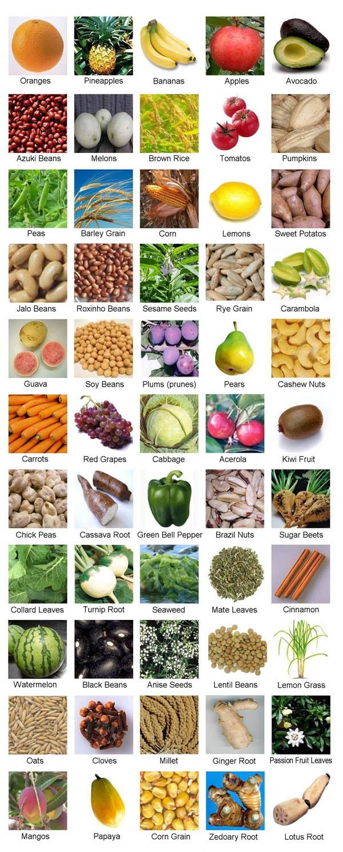55 foods